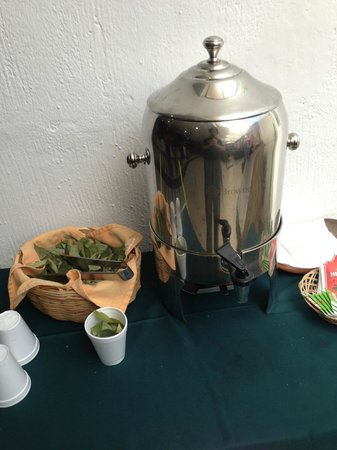 Hotel Suenos del Inka : Coca team