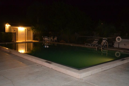 Motel 6 Tampa - Fairgrounds : Night view of pool.