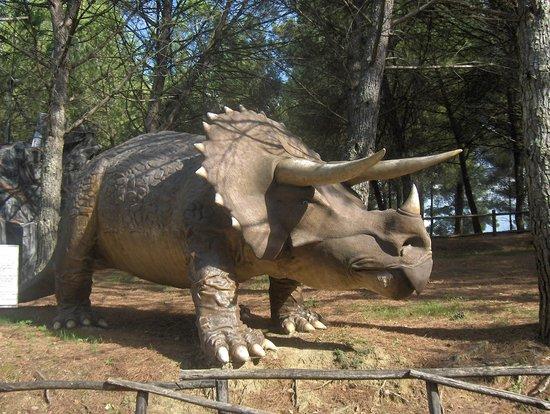 Parco Preistorico : Triceratopo