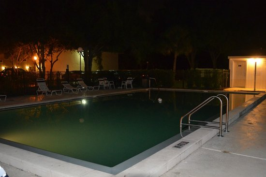 Motel 6 Tampa - Fairgrounds : Night view of pool area.