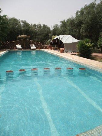 Emy les Une Nuits: la piscine