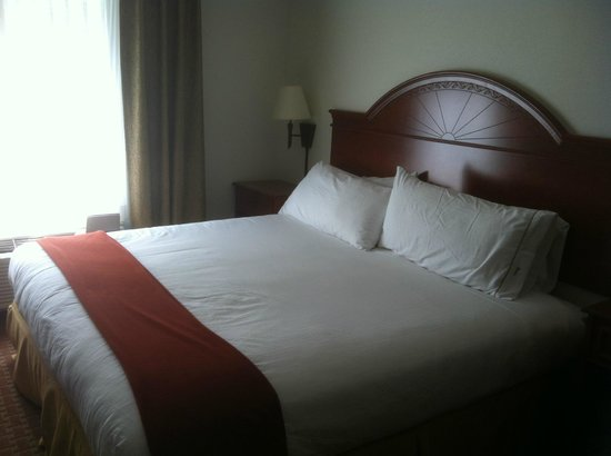Holiday Inn Express Frackville: King bed - VERY comfortable & had clean, white comforters!