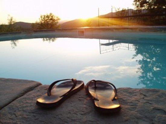 Podere Timignano : the pool at atimignano