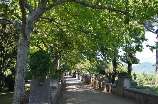 Villa Cimbrone Hotel: garden grounds