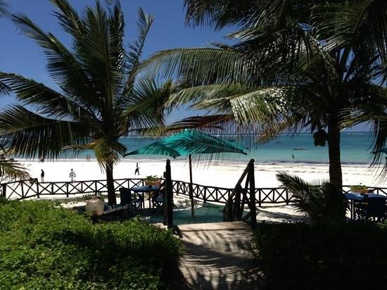 Diani Blue: plage et jardin