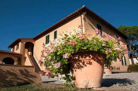 Agriturismo La Colombaia: the farm house from the pool