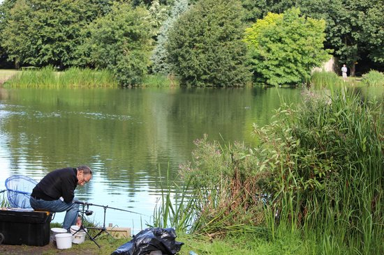Moon Lake Fishery (Tattershall) - 2020 All You Need to Know Before You Go (with Photos) - Tattershall, England | Tripadvisor
