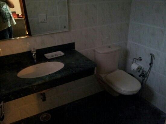 Treebo Mint: toilet