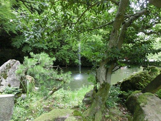 Oyama Shrine : 神苑(県指定名勝)旧金谷御殿の庭園であって、古代舞楽の楽器を模した地泉廻遊式の名園です。