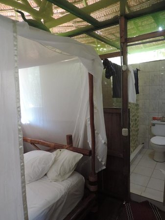Amazonia Expeditions' Tahuayo Lodge: My room