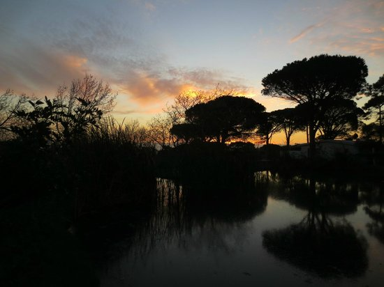 Chelaya Country Lodge: Sunset view from the grounds