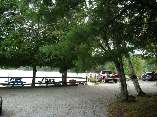 Motel Long Lake and Cottages: view of grounds