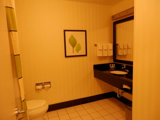 Fairfield Inn & Suites Tehachapi: bagno