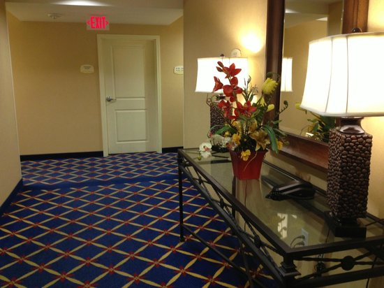 TownePlace Suites by Marriott Fort Worth Downtown: Hall