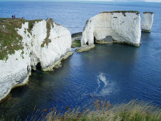 Old Harry Rocks Picture Of Old Harry Rocks Swanage