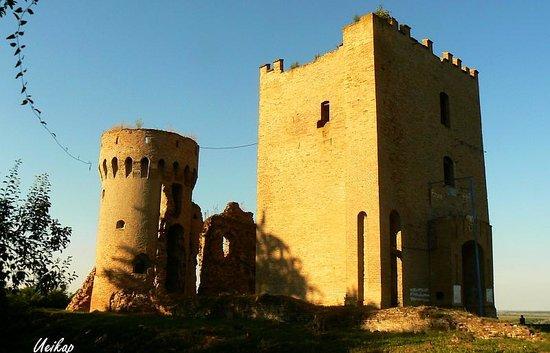 Erdut, كرواتيا: Erdut Castle