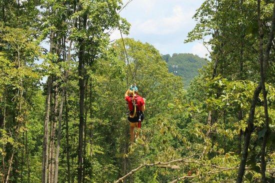 "Chattooga Ridge Canopy Tours: Ranger zipping to receive Guests at the next platform ""Deck Deck"""