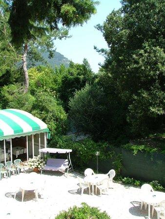 Hotel Il Parco : Il giardino dell'Hotel