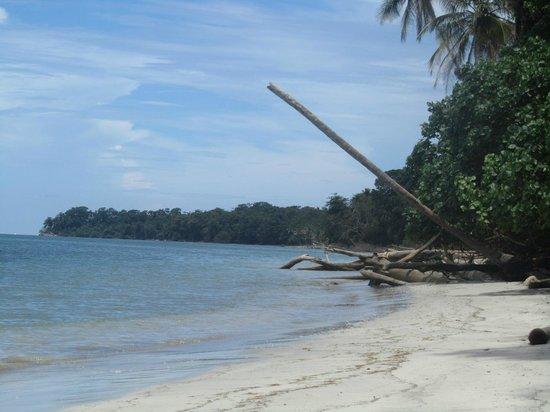 La Casa de las Flores Hotel: Playa Cahuita