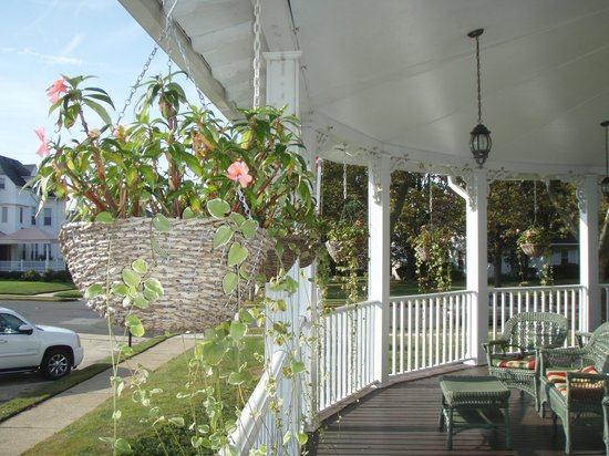 Hewitt Wellington : Front porch and flowers