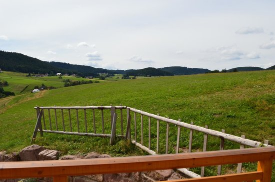 Fehrenbacherhof: the balcony view