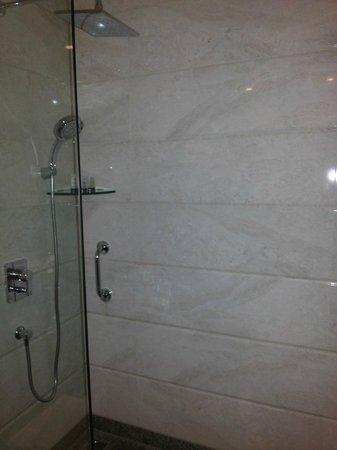 Gateway Hotel at Akota Gardens Vadodara : Nice little shower Granited