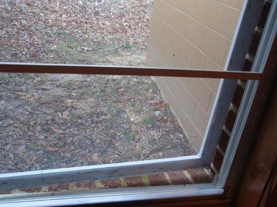 Rockbridge, MO: broken screen on window