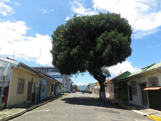 Enfrente de Kaps place, mismo calle