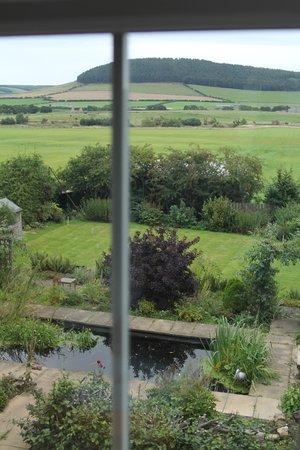 The Old Manse Chatton: Blick aus dem Fenster