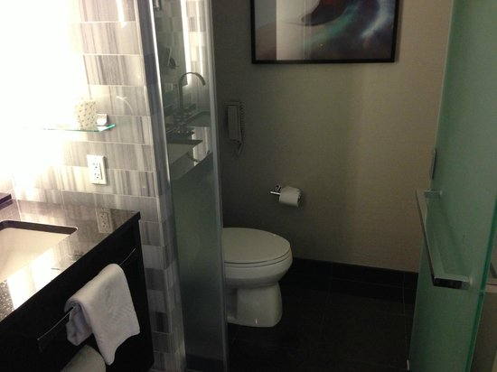 The Ritz-Carlton, Los Angeles: Toilet