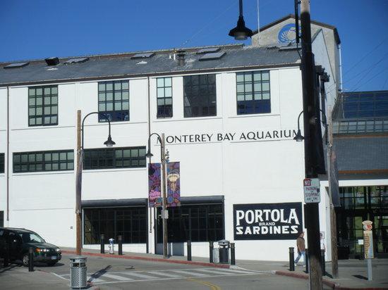 Infinidad De Habitats Foto Di Monterey Bay Aquarium