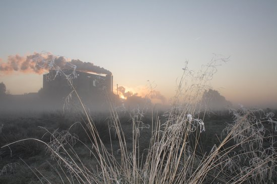 The Reedcutter Inn: Rural industry through an early autumn mist...