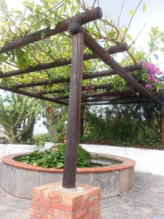 Hotel Casa La Vigna: la fontana delle ninfee