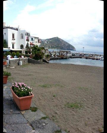 Hotel Casa La Vigna: la spiaggia ed il porticciolo