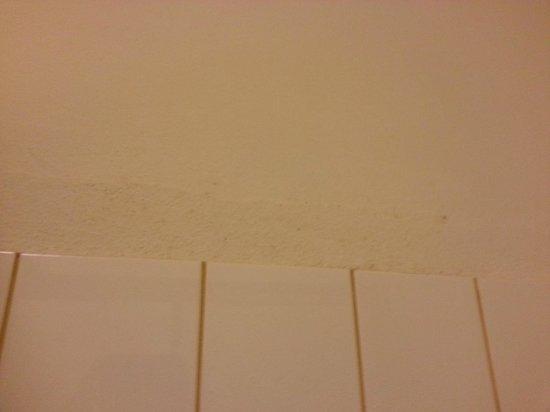 Hotel Goldener Hirsch: Schimmel in der Dusche