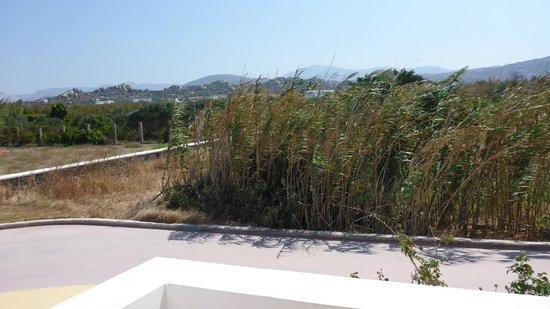 Plaka 2 Hotel: Sea view... (!)
