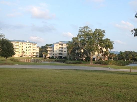 Bluewater Resort and Marina: the resort