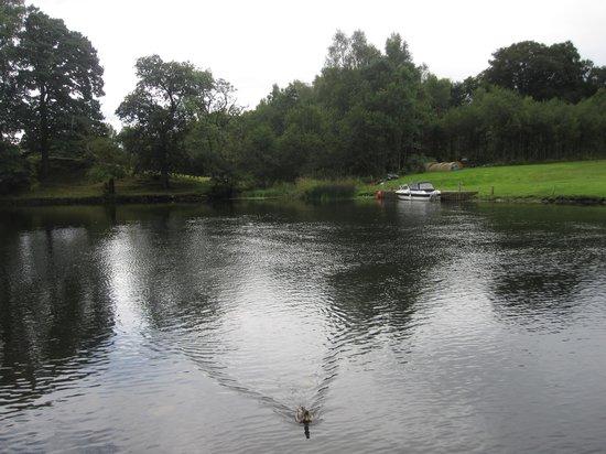 The Swan Inn: The river