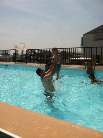 Premiere Motor Inn: fun at the pool