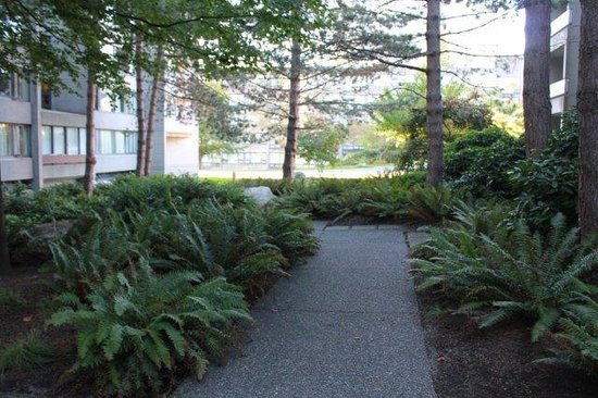 West Coast Suites at UBC: Courtyard