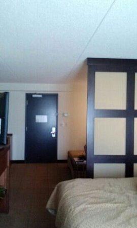 Hyatt Place Pittsburgh-North Shore: Room divider