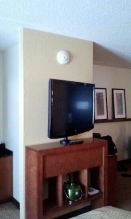 Hyatt Place Pittsburgh-North Shore: Tv that swivels