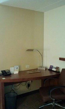Hyatt Place Pittsburgh-North Shore: Desk