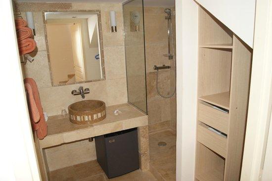 Mas de la Tour : View from just inside entrance, toilet, shower, fridge & luggage storage area