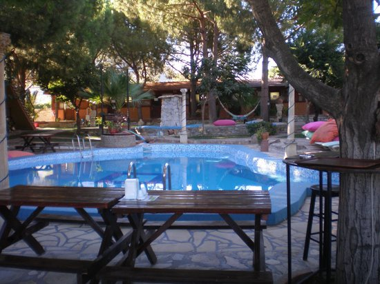 Atilla's Getaway: Jardim e piscina
