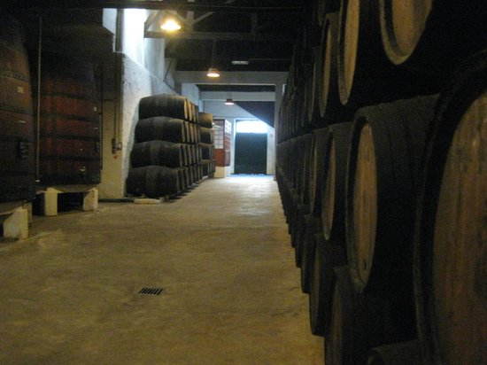 Offley Cellars : Cantina