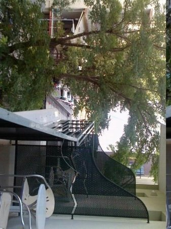 Hotel Plaza : vista balcone