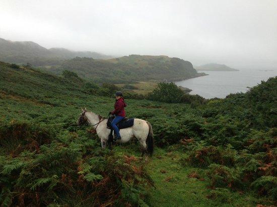 Lunga Riding Stables: Scotland