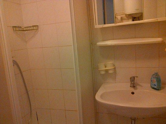 Apartments Heine: Baño