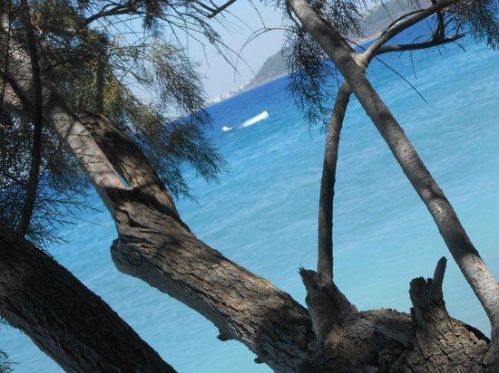 Nathalie Hotel: Beach